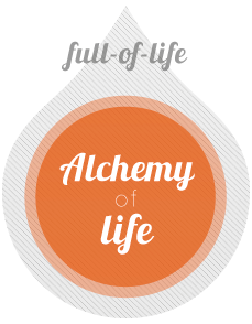 Alchemy of Life - Training